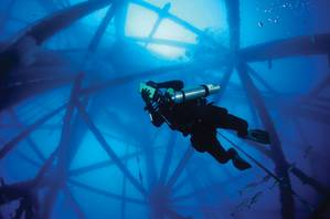Diver TX Rig.jpg