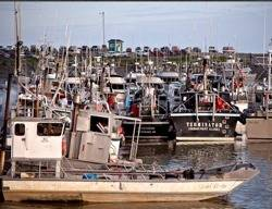 Fishing Boats, Bristol Bay: Photo courtesy of Fishermen for Bristol Bay