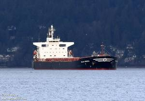 Pictured is the 735-foot bulk carrier Gallia Graeca while anchored near Lighthouse Park in Vancouver, Canada, Jan. 13, 2016. (Photo: U.S. Coast Guard)