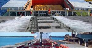 Photo: Paragon Shipping Inc