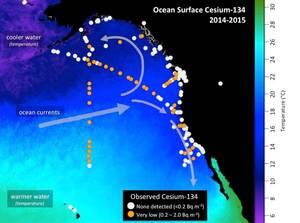 Map shows the location of seawater samples taken by scientists and citizen scientists that were analyzed at the Woods Hole Oceanographic Institution for radioactive cesium as part of Our Radioactive Ocean. Cesium-137 is found throughout the Pacific Ocean and was detectable in all samples collected, while cesium-134 (yellow/orange dots), an indicator of contamination from Fukushima, has been observed offshore and in select coastal areas. (Figure by Jessica Drysdale, Woods Hole Oceanographic Insti
