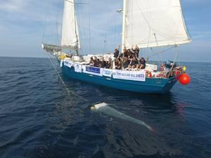 BTOWU vessel Fantastiko (Photo: ABB)