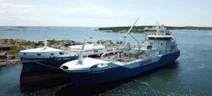 Coralius reaches 100 bunkerings milestone - LNG demand on the rise. Photo:  Gasum Oy