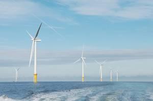 Photo: Carbon Trust