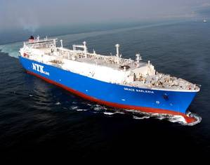 Grace Barleria (Photo: NYK)