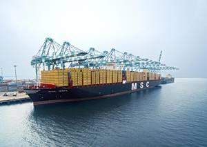 Introduced in 2015, the 19,224 TEU MSC Maya is a member of MSCs Oscar Class supersize containerships (Photo: MSC)
