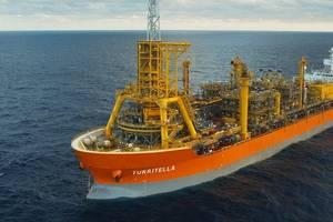 Turritella (Photo: Shell)