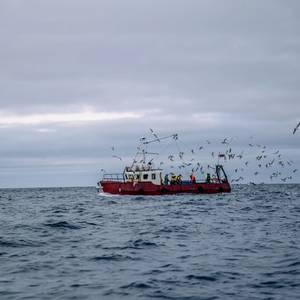 Coronavirus Slows Global Commercial Fishing