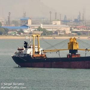 U.S. Blacklists Companies, Ships Linked to North Korean Coal Exports