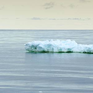 Melting Sea Ice: A Canary in the Coal Mine
