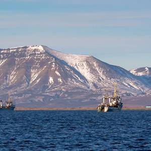 Carbon Emissions from Trawler Fishing on Par with Aviation -Report