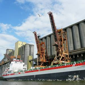 Argentine Grain Inspector Strike Ends, Exports to Flow