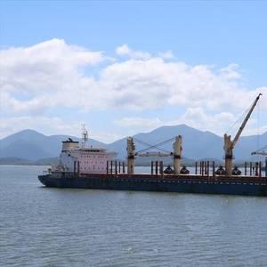 Rare US Soybean Cargo Unloaded at Brazils Paranaguá Port