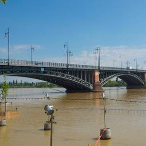 Rhine Closed to Shipping in Germany as Water Rises