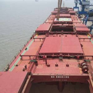 Diana Shipping Secures Charter for 75,700dwt Bulk Carrier