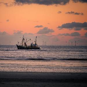 Offshore Wind Seen as Lucrative Side Gig Option for US Fishermen, Mariners