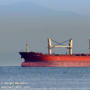 Invasive Pest-infested Cargo Ship Ordered to Leave U.S. Waters