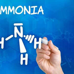 Belgian Shipowner, Canadian Fertilizer Firm Set to Build Ammonia-fueled Ship