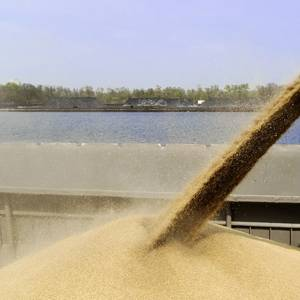More Grain Terminals Found Damaged by Ida, Exports May Stall for Weeks
