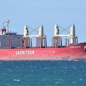 Indonesia Finds New COVID-19 Cluster After Bulk Carrier Infections