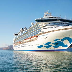 Coronavirus Cases Rise on Cruise Ship Marooned off Japan