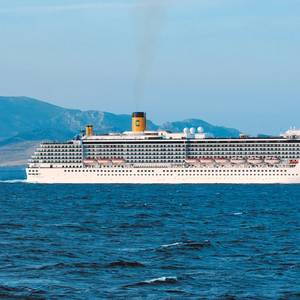 Signs Led to Japan's Second Coronavirus Cruise Ship Hot Spot