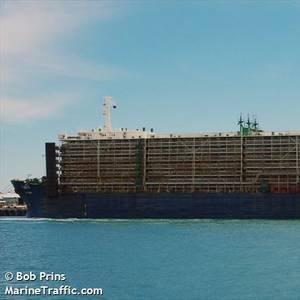 Livestock Ship Held off Australia Due to Coronavirus Outbreak