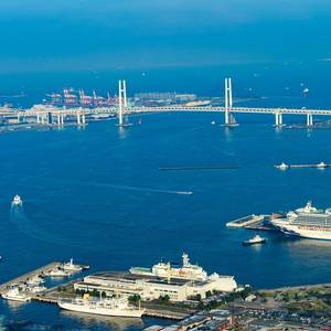 Tokyo Port to Waive Entry Fee for Ships Powered by LNG, Hydrogen