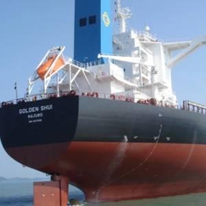 GOGL Adds Dry Bulk Vessel