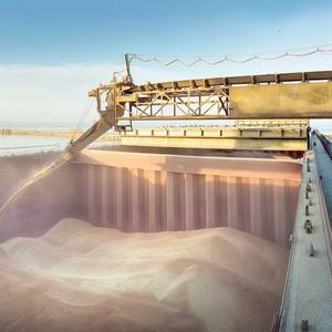 France Loading Rare Wheat Shipment for China
