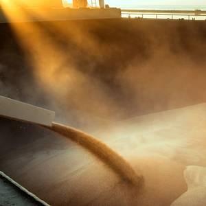 Port Strikes Delay Grain Loadings in Argentina