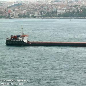 Cargo Ship Sinks in Black Sea, Off Turkey