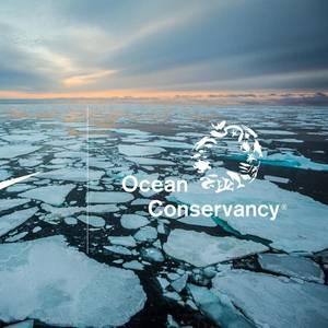 Nike Takes Arctic Shipping Pledge