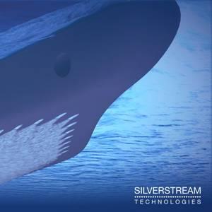 Silverstream Air-lubrication Chosen for 8 Newbuilds