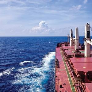 Market in Focus: Bulkers