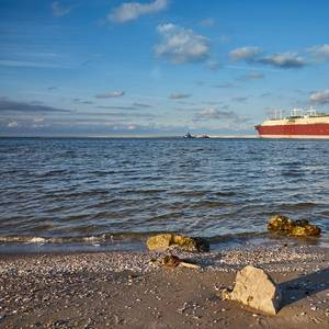 LNG Carriers Build Up Around Virus-hit Europe
