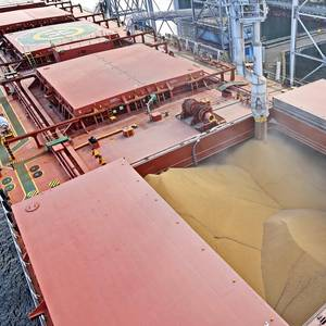 US Soy Exports Hit 6-month High as Gulf Loadings Rise After Ida