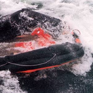 Sweden to Allow Underwater Probe of Estonia Wreck Site