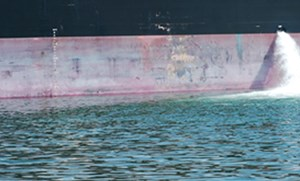 Addressing Invasive Species in Ships' Ballast Water