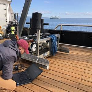 Underwater Noise Study Completed for Washington State Ferries