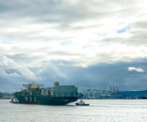 NWSA January Container Volumes Drop