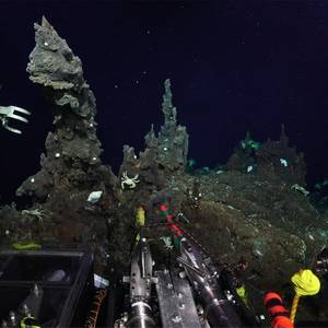 Scientists Find Life at Unexplored Ocean Depths