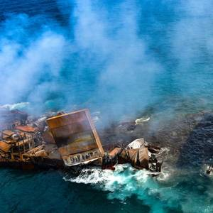 Hundreds of Dead Turtles Wash Ashore After X-Press Pearl Fire