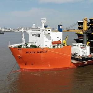 Rotterdam Port to Welcome Black Marlin