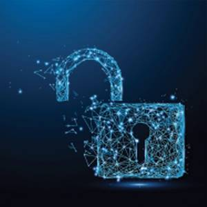 Cyber Risk Management: What Maritime Professionals Need to Know Now