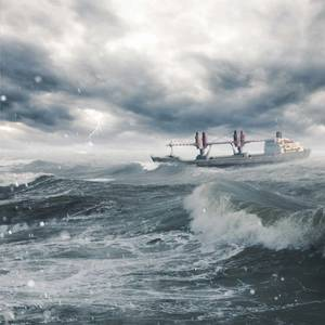 Maritime Resilience and the Human Element at MRS2020