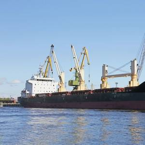 Trade Wars Clearly Bad for Global Shipping - BIMCO