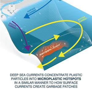 SCIENCE: Seafloor Microplastic Hotspots Controlled by Deep-sea Currents