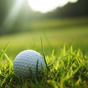 Charity Golf Event to Benefit Mercy Ships