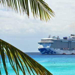 CDC Says Cruise Ships Pose Very High Risk for Coronavirus